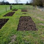 Выполню различные садовые и дачные работы