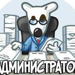 Администрирование и реклама сообществ ВК, ОК, Instagramm.